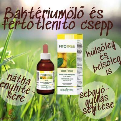 Bakteriumolo-es-fertotlenito-csepp