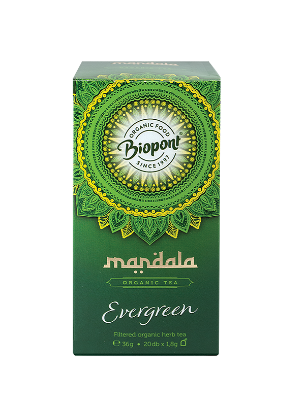Mandala Evergreen tea 20 filter